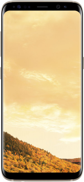 Samsung Galaxy S8 SM-G950 64GB Maple Gold - фото