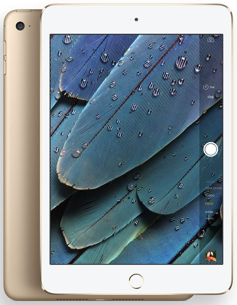 Планшет Apple A1538 iPad mini 4 Wi-Fi 16GB (MK6L2RK/A) Gold - Фото 1